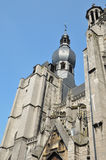 Collegiale church in Dinant Royalty Free Stock Images
