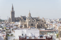 Collegiate Church of the Divine Savior, Seville Cathedral and Gi Royalty Free Stock Images