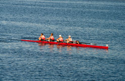 Collegiate Rowing Teams Practice On The Pacific Stock Image