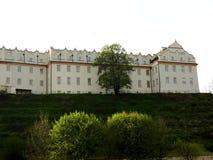 Collegium Gostomianum Zdjęcia Royalty Free