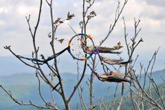 Collettore di sogno dell'amuleto con il primo piano della piuma su un albero nelle montagne fotografia stock