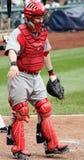 Collettore Ryan Hanigan dei Cincinnati Reds Immagini Stock