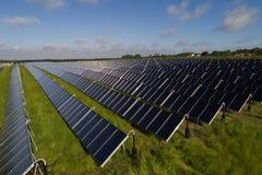 Collettori solari con le pecore Fotografia Stock Libera da Diritti
