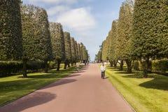 COLLEVILLE, FRANCES - 23 AVRIL : Touriste dans l'Américain  Image stock
