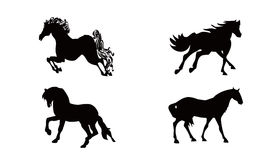 Collezioni dei cavalli Fotografie Stock