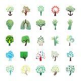 Collezioni dell'icona dell'albero Fotografia Stock