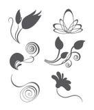 Collezioni di elemen d'annata di progettazione floreale di vettore illustrazione vettoriale