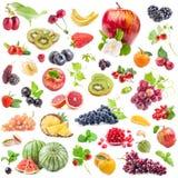 Collezioni di frutti immagini stock libere da diritti