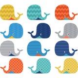 Collezioni sveglie variopinte della balena royalty illustrazione gratis