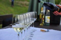 Colli Orientali del Friuli, Italien Exponeringsglas för vinavsmakning arkivbild