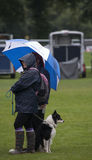 The Collie & Brolly Stock Images