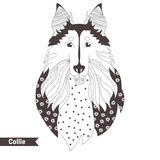 Collie. Coloring book Stock Photo