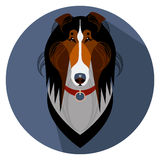 Collie dog face - vector illustration Royalty Free Stock Photography