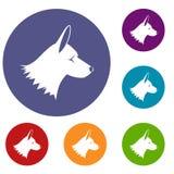 Collie dog icons set Royalty Free Stock Photo