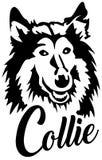 Collie hoofd zwart-wit royalty-vrije illustratie