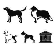 Collie, labrador, boxer, poodle. Dog breeds set collection icons in black style vector symbol stock illustration web. Collie, labrador, boxer, poodle. Dog Royalty Free Stock Photography
