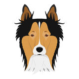 Collie Rough dog vector illustration Stock Photography