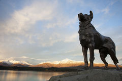 The Collie statue and the sunset. Near the Good Shepherd Church in New Zealand Stock Photography
