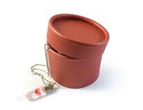 Collier avec une ampoule et un boîte-cadeau de fleur Images libres de droits