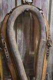 Collier de cheval antique Images stock