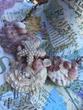 Collier de coquillage sur le collage de carte Photos libres de droits