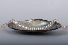 Collier de perle Photo stock