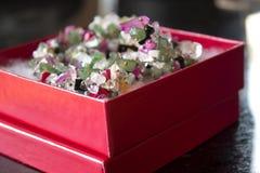 Collier de pierre gemme dans une boîte rouge Image libre de droits