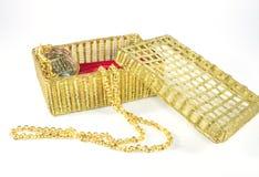 Collier et boîte d'or Photo stock