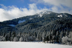 Collier Peak 16. Idaho Winter, West Mountain Range Stock Image