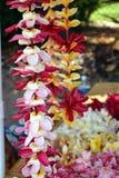Colliers hawaïens frais de leu de plumeria images libres de droits