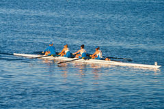 Colligiate Rowing Teams Practice On the Pacific Stock Photo