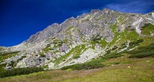 Collina in alto Tatras, Slovacchia Immagine Stock Libera da Diritti