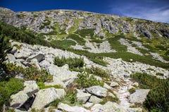 Collina in alto Tatras, Slovacchia Immagine Stock