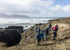 Collina che cammina sul modo atlantico selvaggio in Irlanda fotografie stock libere da diritti