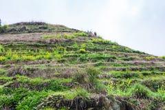 collina con i motivi a terrazze del riso nel villaggio di Dazhai Fotografia Stock