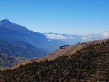 Collina con le abetaie davanti al paesaggio della montagna fotografia stock libera da diritti