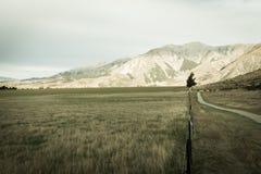Collina del castello, Nuova Zelanda Fotografia Stock
