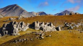 Collina del castello, Nuova Zelanda Immagini Stock Libere da Diritti