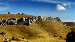 Collina del castello, Nuova Zelanda Fotografia Stock Libera da Diritti