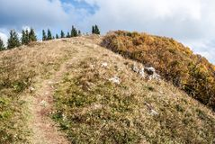 Collina del chrbat di Kozi in montagne vrchy di Starohorske di autunno vicino alla località di soggiorno di Donovaly in Slovacchi Fotografie Stock