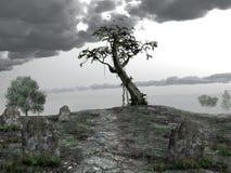 Collina del cimitero Fotografia Stock Libera da Diritti