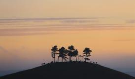 Collina del Colmer, Dorset, Inghilterra Fotografia Stock