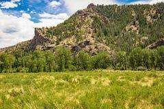 Collina del Wyoming nel parco nazionale di Yellowstone Fotografie Stock Libere da Diritti