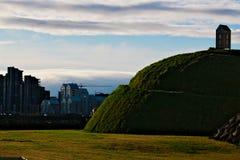 Collina dell'erba a Reykjavik Fotografia Stock Libera da Diritti