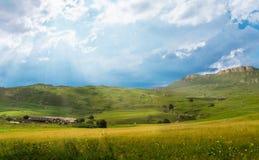 Collina dell'erba verde Immagine Stock Libera da Diritti