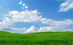 Collina dell'erba verde Fotografie Stock