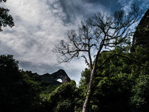 Collina della luna Fotografia Stock