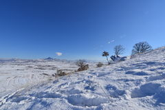 collina della neve di inverno Fotografia Stock