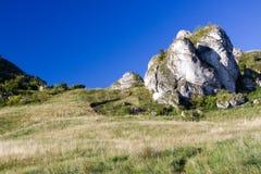 collina della roccia Immagine Stock