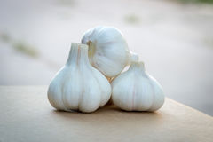 Collina di aglio su cartone Fotografia Stock Libera da Diritti